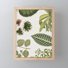 Green Botanical Plants Watercolor Pattern Framed Mini Art Print