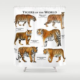 Tigers of the World Shower Curtain