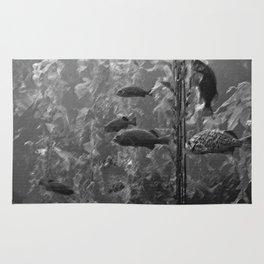 fish charcoal Rug