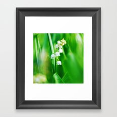 Lily  of the Valley Nature Photography Framed Art Print