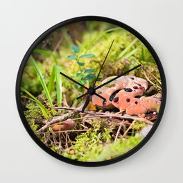 Hydnellum Peckii - Scary Beautiful Mushroom Wall Clock