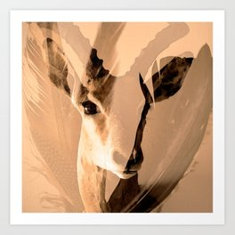 Beautiful and fast - Impala portrait Art Print