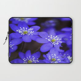 First Spring Flowers in Forest Laptop Sleeve