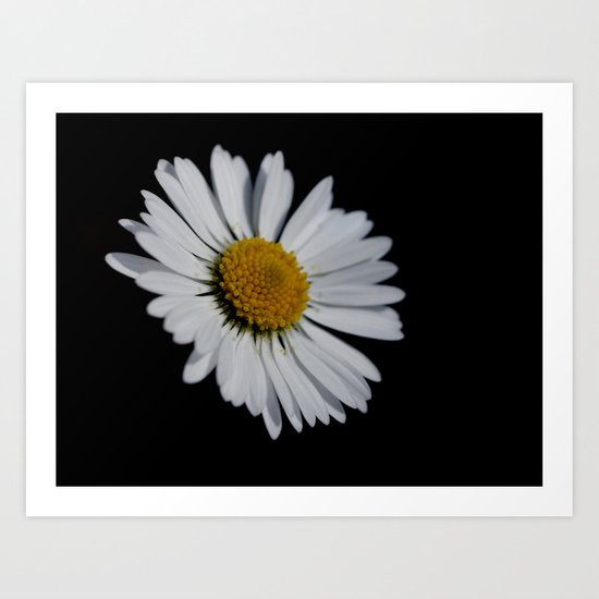 I like daisies Art Print