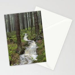 Water always flows downhill Stationery Cards