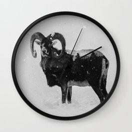 Corsican Sheep (B&W) Wall Clock