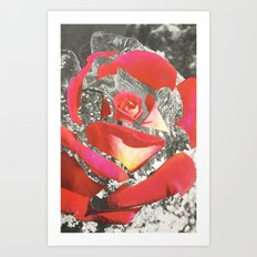 Exploded Rose Art Print
