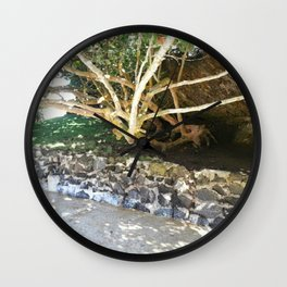 Hiding Places Wall Clock