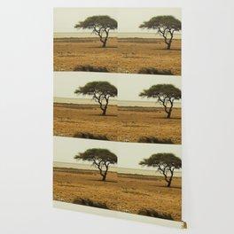 African Savannah Wallpaper
