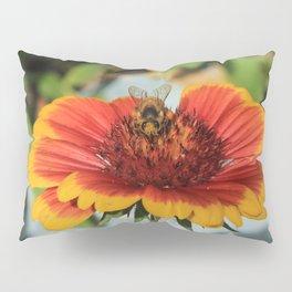 Looking Bee Pillow Sham