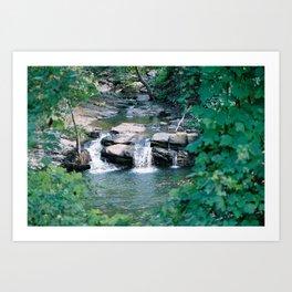 Up the shallow stream Art Print