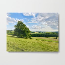 The South Downs Metal Print