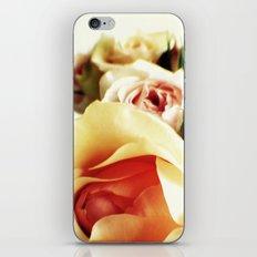 Subtle iPhone & iPod Skin