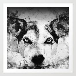 lying dog close-up view wsbw Art Print
