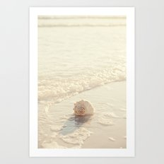 Seashell by the Seashore I Art Print