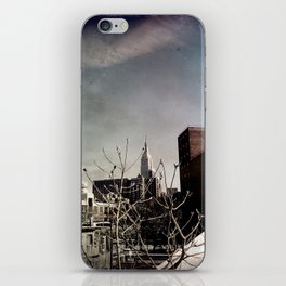 Winter Chill in the City iPhone Skin
