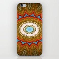 taste of indian flavour II iPhone & iPod Skin