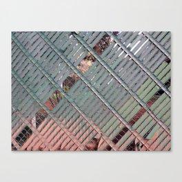 Privacy Canvas Print