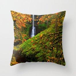 USA Silver Falls State Park Autumn Nature Waterfalls Parks park Throw Pillow