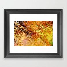 Autumn in paradise Framed Art Print