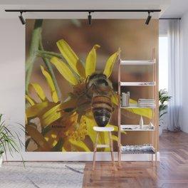 Desert Sunflower Pollen Picker Wall Mural