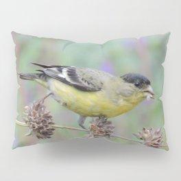 Lesser Goldfinch Snacks on Seeds Pillow Sham