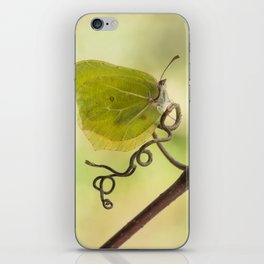 Yellow butterfly on a curly branch iPhone Skin