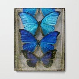 Sapphire Butterfly Metal Print