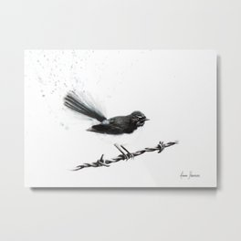 Coleraine Willy Wagtail Metal Print