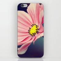cosmos iPhone & iPod Skins featuring Cosmos by Lawson Images