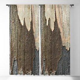 Eucalyptus Tree Bark and Wood Abstract Natural Texture 31 Blackout Curtain