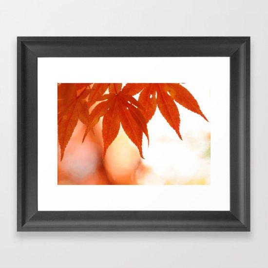 Maple Reds Framed Art Print