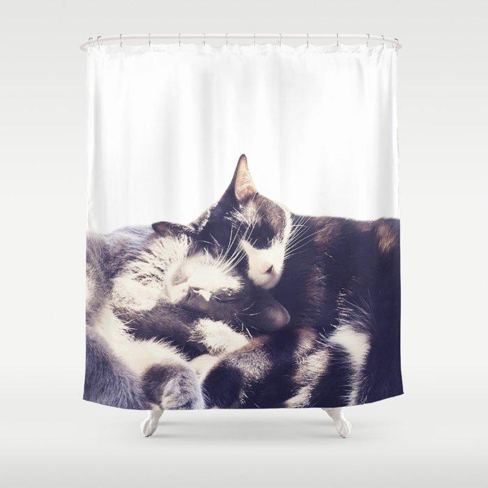 Cats again Shower Curtain