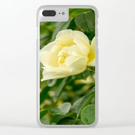 City of York Rose Clear iPhone Case