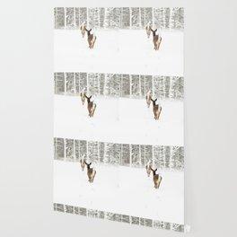 Doe In Winter Wallpaper