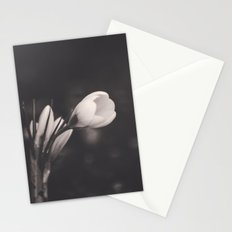 Secrets in the Shadows Stationery Cards