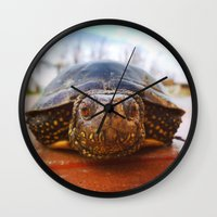 turtle Wall Clocks featuring Turtle by Anna Milousheva