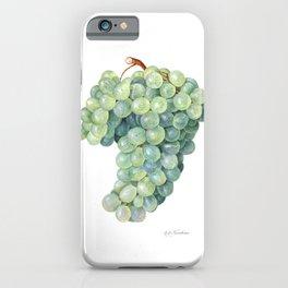 Green Grape iPhone Case