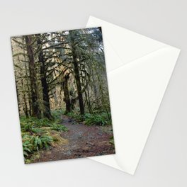 Rainforest Adventure II Stationery Cards