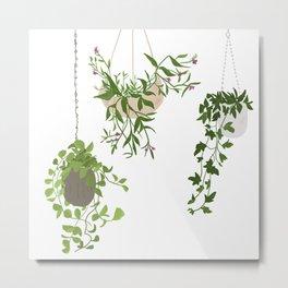 Hanging Plants Metal Print