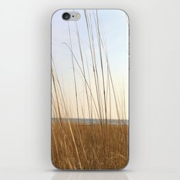 Summer Seagrass iPhone Skin