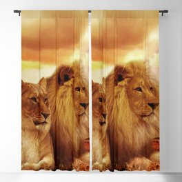 Lion couple | Couple de Lion Blackout Curtain
