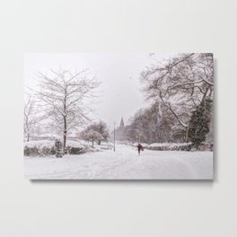 snow days in the park Metal Print