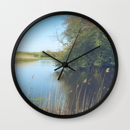 Mass Audubon, Marshfield, Massachusetts Wall Clock