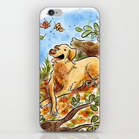 lab iPhone & iPod Skins featuring Golden Lab by Renee Kurilla