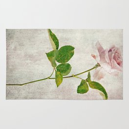 English Tea Rose  Rug