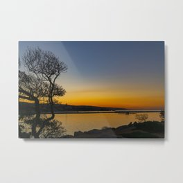 Dawn at the Wedge Tree Metal Print