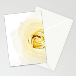 Whtie Rose Stationery Cards