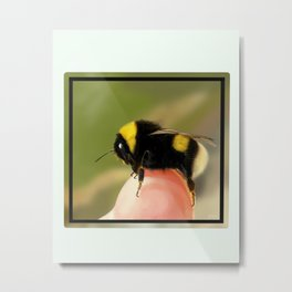 Bee on a Finger Metal Print