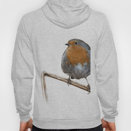 Robin red breast wildlife birds Hoody